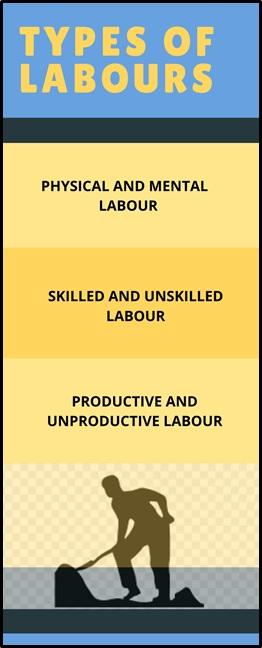 labour economics assignment help