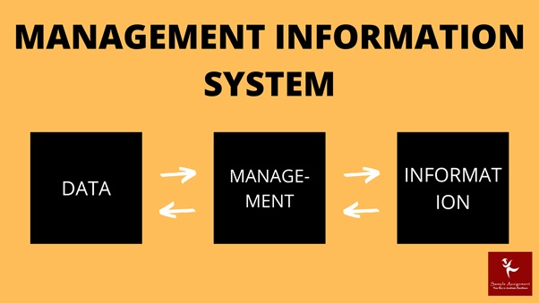 management information system assignment help