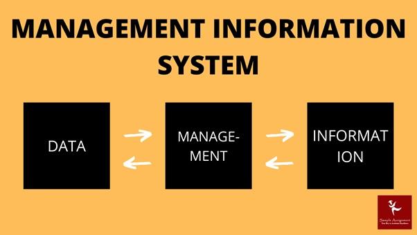 management information system assignment help