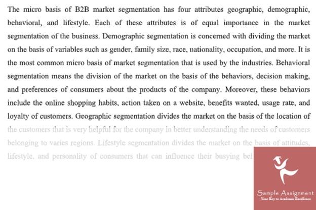 market segmentation assignment online class=