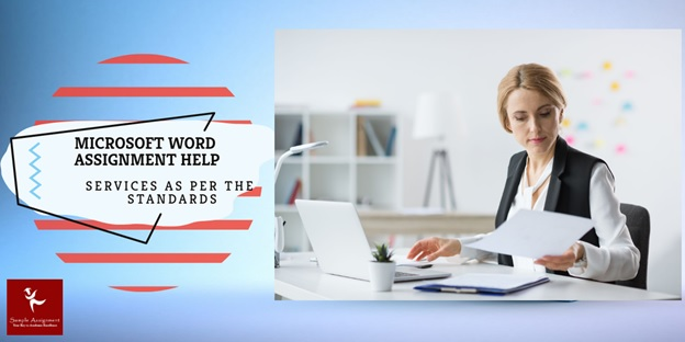 microsoft word assignment help