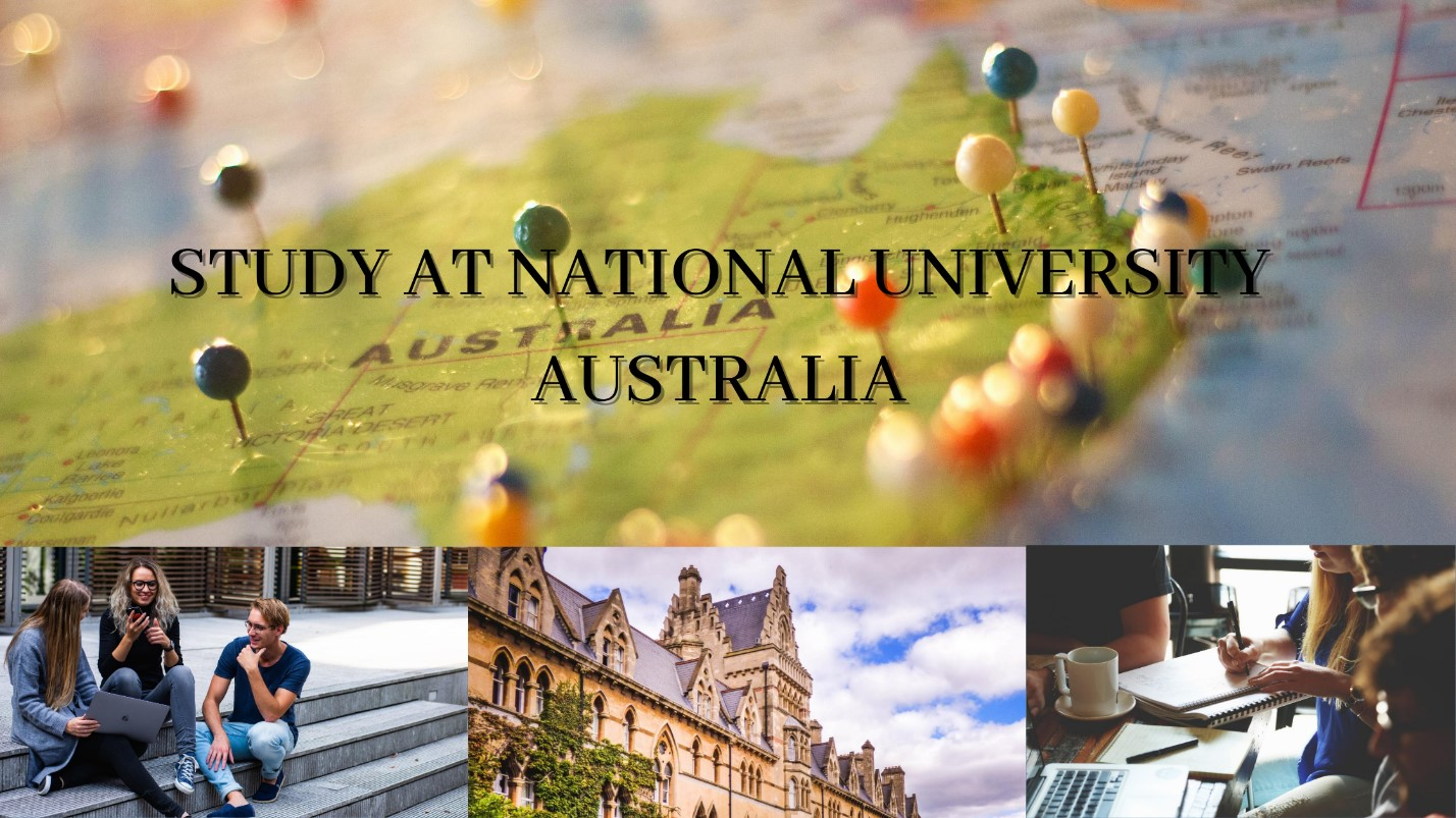 national university assignment help service