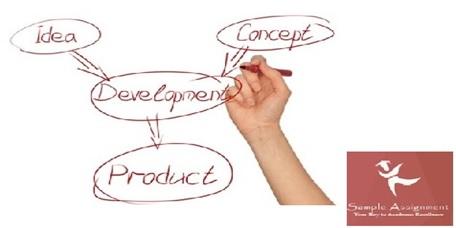new product development assignment help
