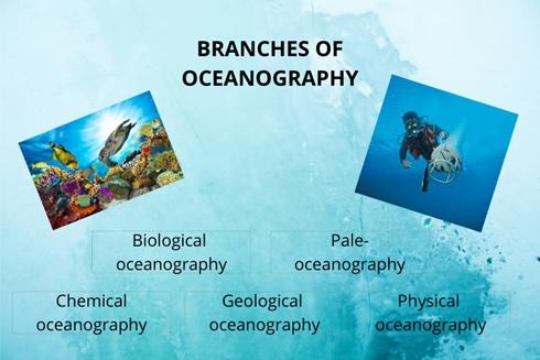 Oceanography Academic Assistance through Online Tutoring