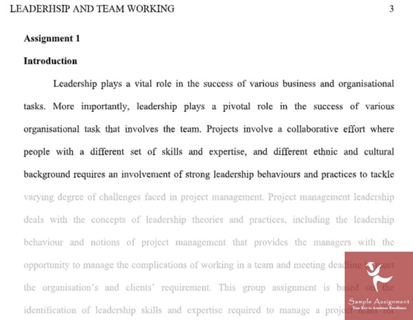personal learning portfolio assignment online