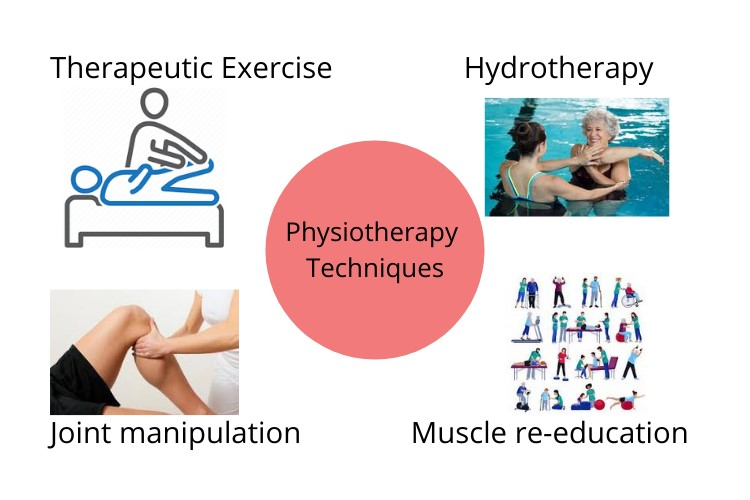 physiotherapy assignment help