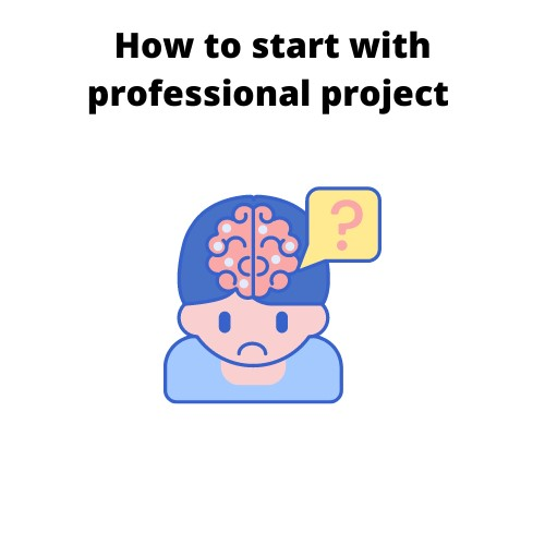 professional project assignment help