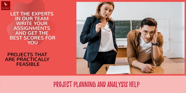 project planning and analysis help
