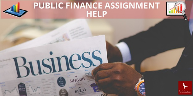 public finance assignment help