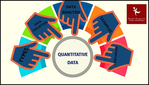 quantitative analysis assignment help
