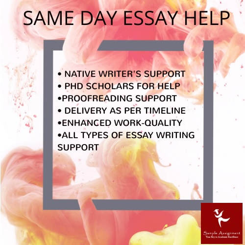 same day essay help