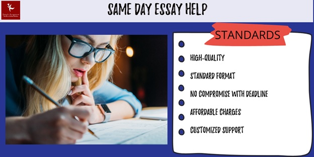 same day essay writing help