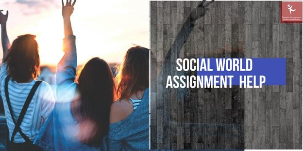 social world assignment help