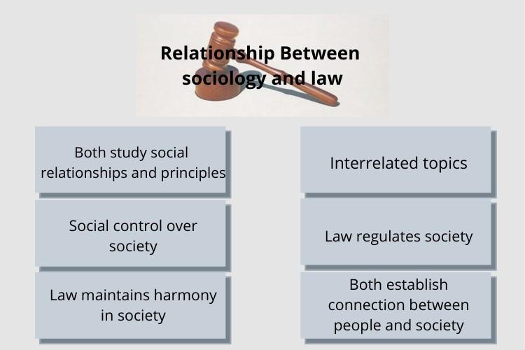 sociology law essay help