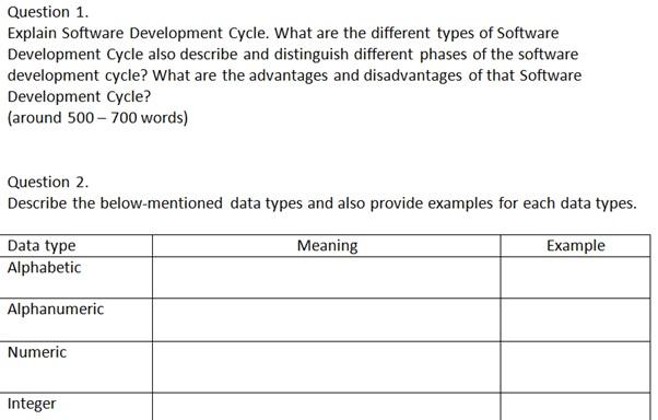 software development task