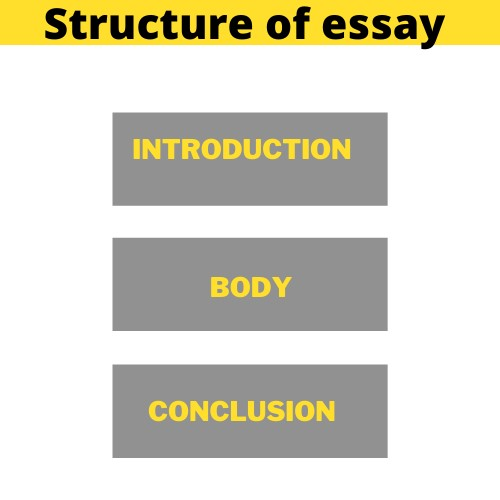 professional essay writers help