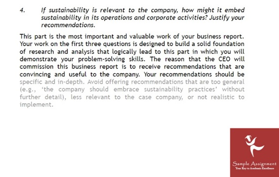 sustainability management assignment example online