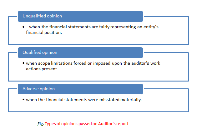 types of options passes on Auditors report