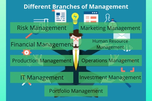 branches of management
