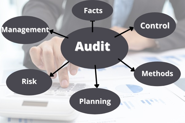 auditing assignment help uk