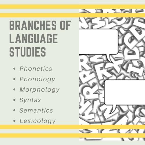 branches of language studies
