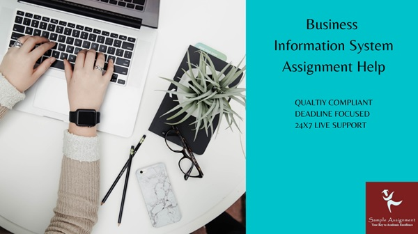 business information system assignment help