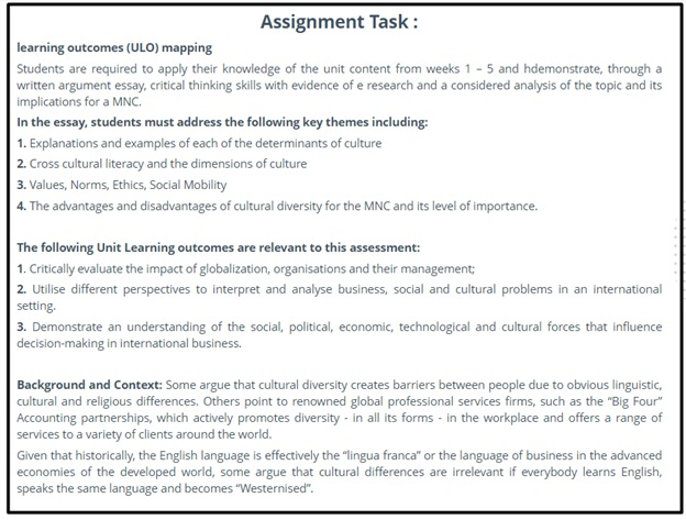 international business essay question