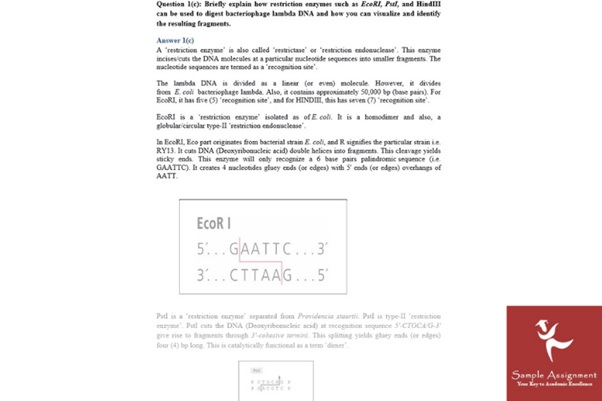 molecular medicine assignment answer