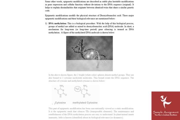 molecular medicine assignment writers