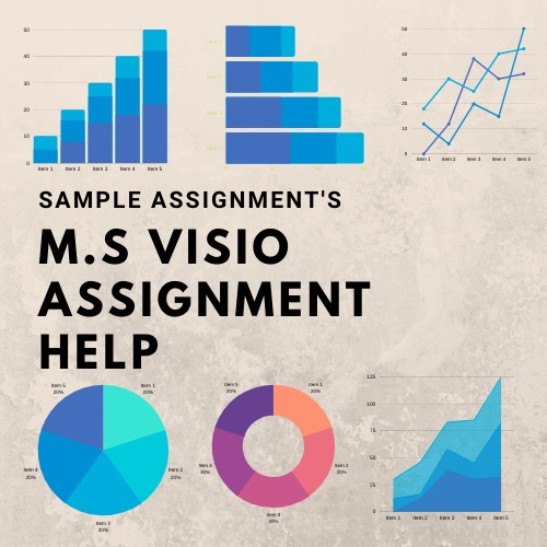 ms Visio assignment help