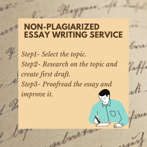 non plagiarized essay writing service