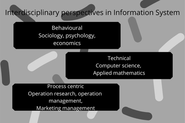 perspectives of business information system