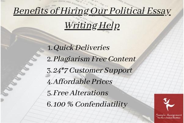 politics essay experts