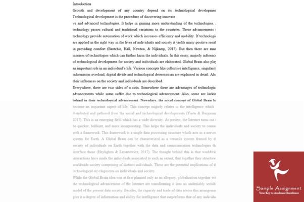 politics essay