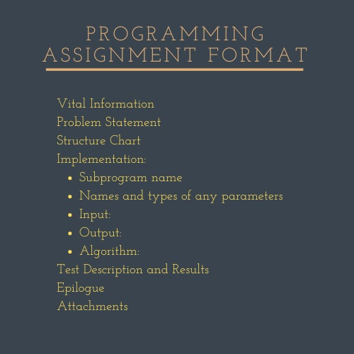 programming assignment format