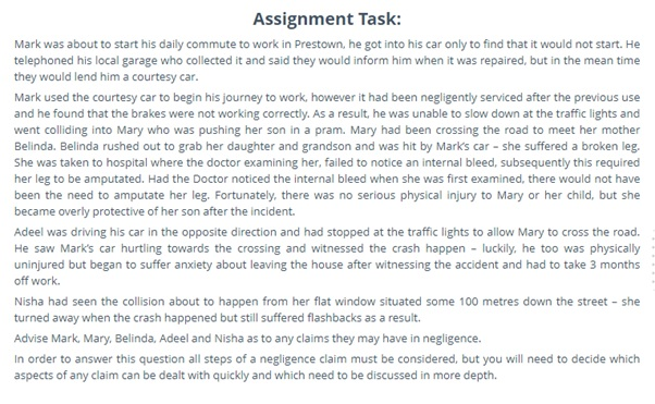 tort law assignment sample UK