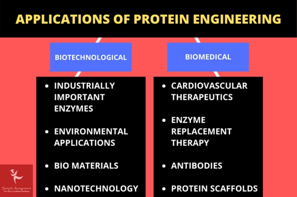 applications of protein engineering