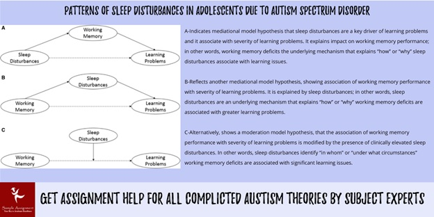 autism theory assignment help