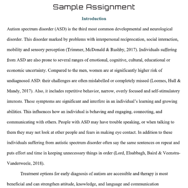 autism theory assignment sample