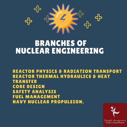 branches of nuclear engineering