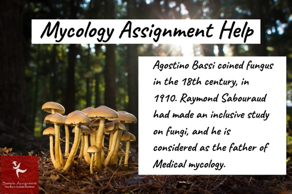 mycology assignment help
