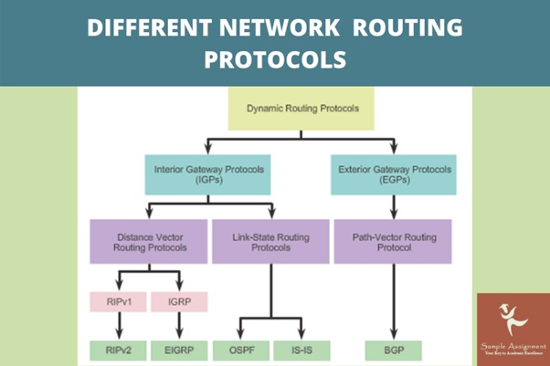 network routing protocols