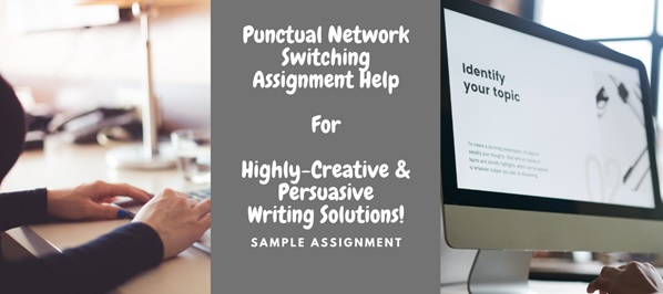 network switching assignment help