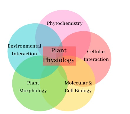 plan physiology