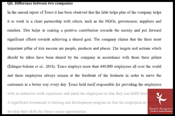 business society assignment sample online