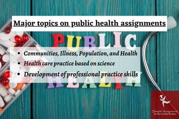 integrative public health assignment help