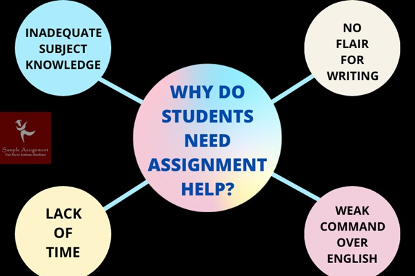 need diploma assignment help