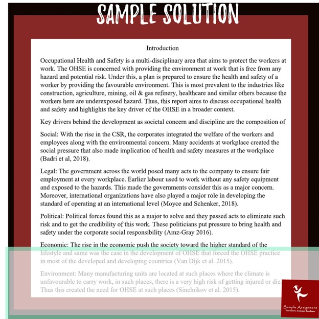 ohse management assignment sample