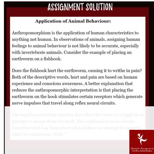 animal behavior assignment example