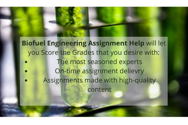 biofuel engineering assignment help